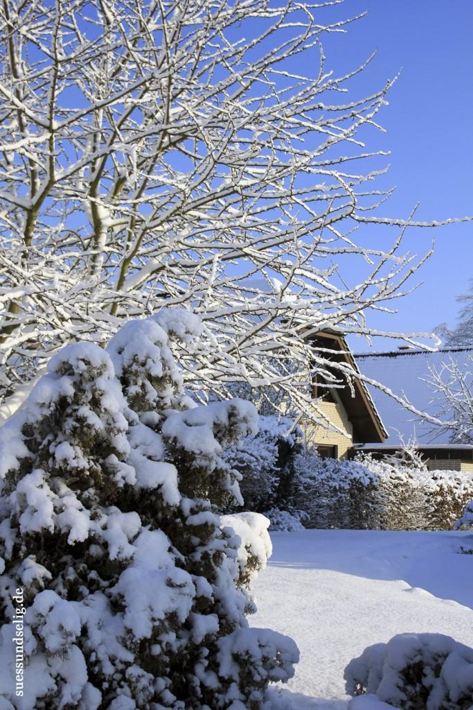 Winter in Riesenbeck