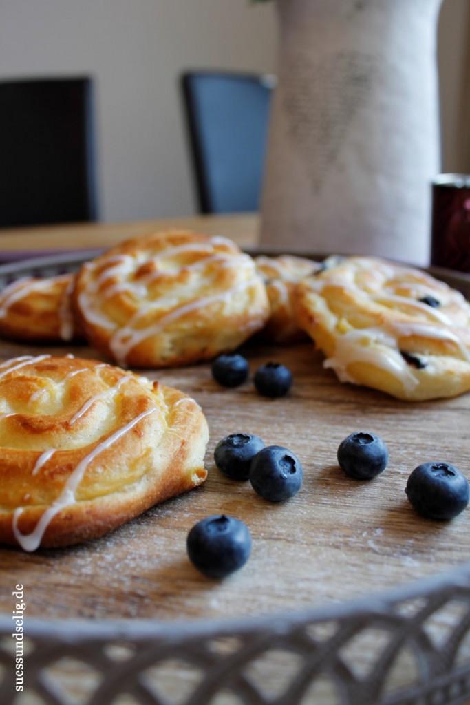 Puddingschnecken Blaubeeren Heidelbeeren_2